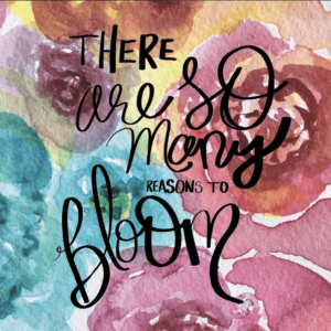 So Many Reasons to Bloom