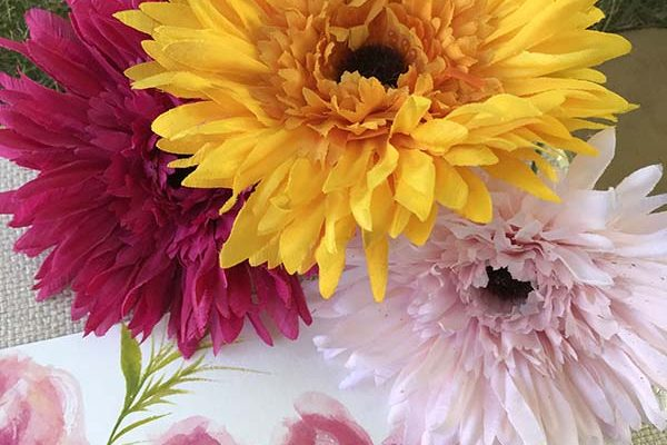 Colors of Fall Flowers