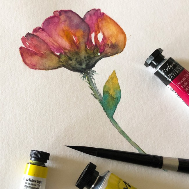Wildflowers in Progress