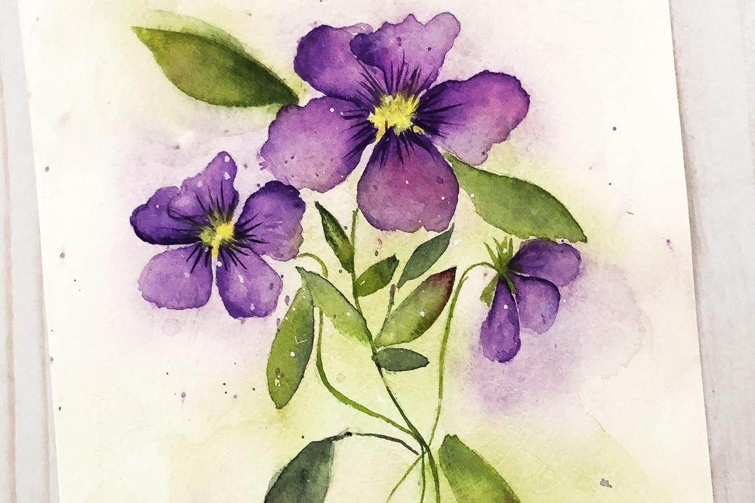 Painting violas in watercolor