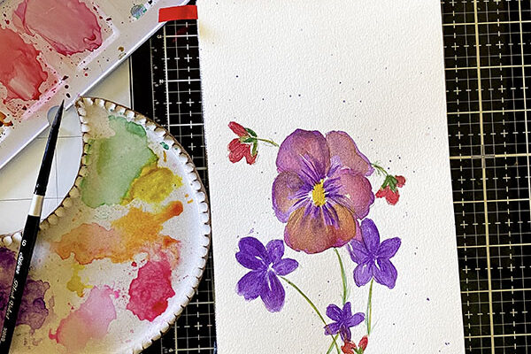 sketchbook pansies in watercolor