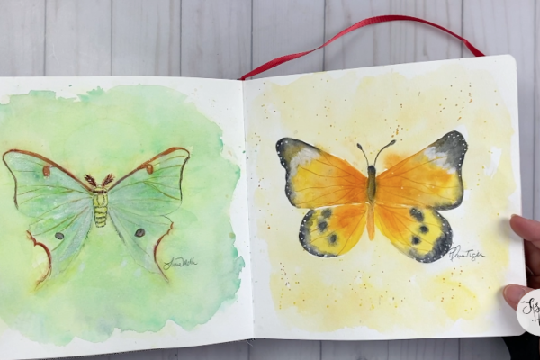 Butterflies in Sketchbook