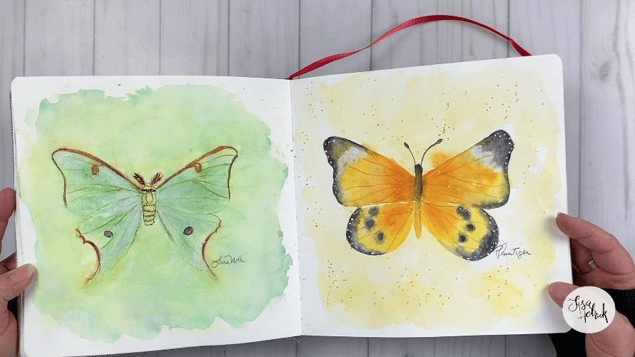 Butterflies in Sketchbook